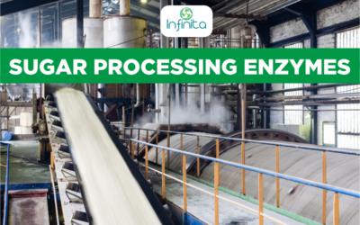 Sugar Processing Enzymes