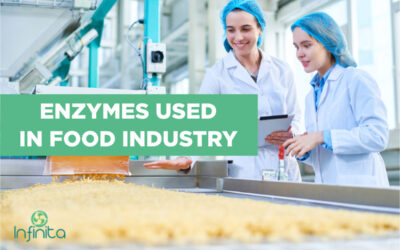 Enzymes Used In The Food Industry