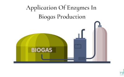 Application Of Enzymes In Biogas Production