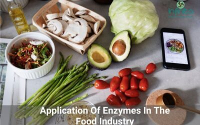 Application Of Enzymes In The Food Industry