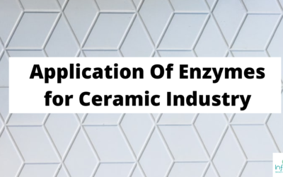 Application of Enzymes in Ceramic Industry