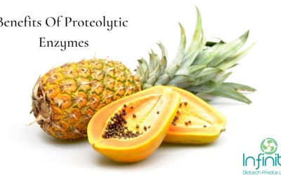 Benefits Of Proteolytic Enzymes