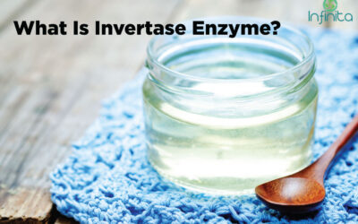 What Is Invertase Enzyme & How To MakeInvertase Enzyme?
