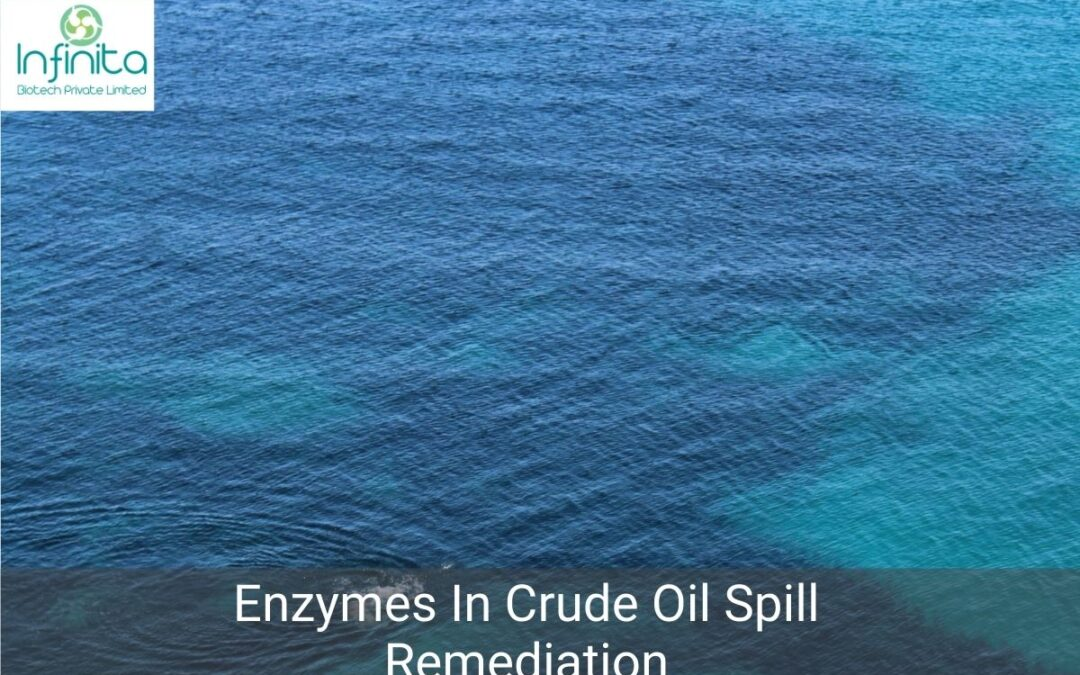 Which Enzymes Are Used For Crude Oil Spill Remediation?