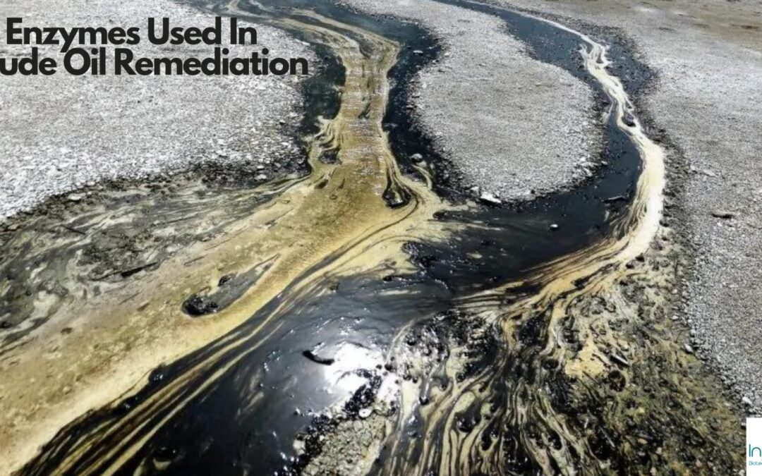 Enzymes Used In Crude Oil Spill Remediation