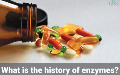 History Of Enzymes