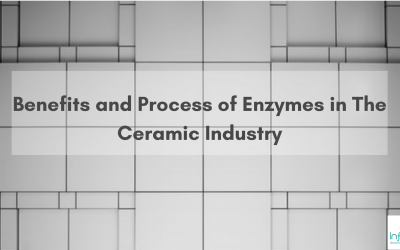 Benefits and Process of Enzymes in The Ceramic Industry