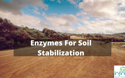 Enzymes For Soil Stabilization