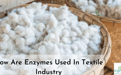 How Are Enzymes Used in Textile Industry?