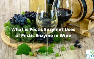 What is a Pectic Enzyme? Uses of Pectic Enzyme in Wine