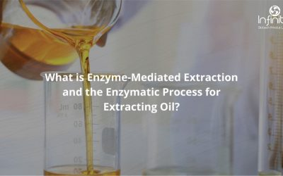 What is Enzyme-Mediated Extraction and the Enzymatic Process for Extracting Oil?