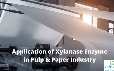 Application of Xylanase Enzyme in Pulp & Paper Industry