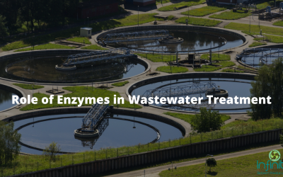 Role of Enzymes in Wastewater Treatment