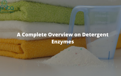 A Complete Overview on Detergent Enzymes