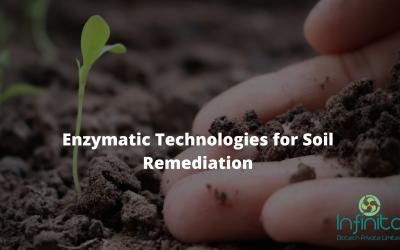 Enzymatic Technologies for Soil Remediation